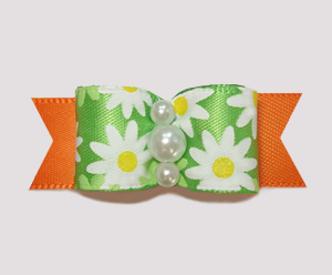 "#2405 - 5/8"" Dog Bow - Bright, Delightful Daisies on Orange"