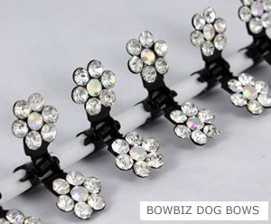 #SW190 - Dog Mini Clip - Sparkly Claw Clip Clear Flower