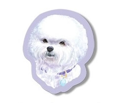 Sticky Notes - Bichon Frise