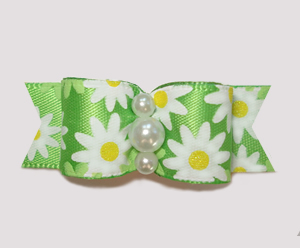 "#2408 - 5/8"" Dog Bow - Bright Delightful Daisies"