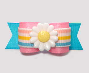 "#2870 - 5/8"" Dog Bow - Sweet Spring Daisy, Pink/Blue w/Stripes"