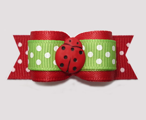 "#2963 - 5/8"" Dog Bow - Country Garden Ladybug, Red/Green"