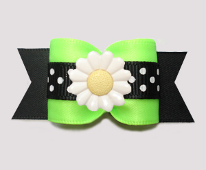 "#A7555 - 7/8"" Dog Bow - Delightful Daisy Dots, Lively Lime/Black"
