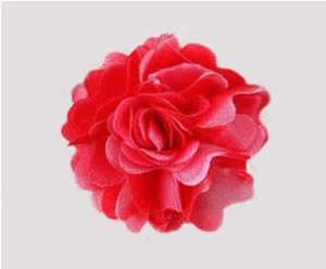 #ASPRBLM15 - Dog Hair Clip - Spring Blossom, Poppy Red