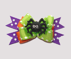 #BTQM282 - Mini Boutique Dog Bow Itsy Bitsy Spider