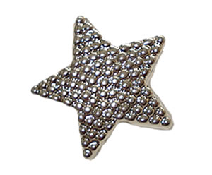 #DIYEM-4000 - Novelty Button Silver Star