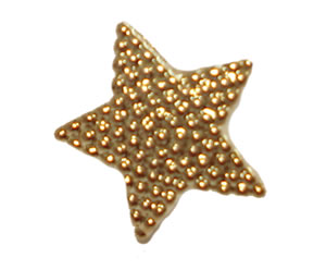 #DIYEM-4010 - Novelty Button Gold Star