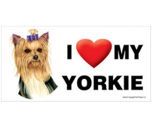 Car Magnet - Yorkie with Bow