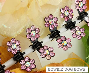 #SW350 - Dog Mini Clip - Sparkly Claw Clip Soft Pink Flower
