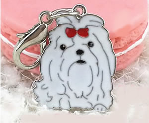 MC01 - Sweet Little Maltese Keychain/Bag Clip or Collar Charm