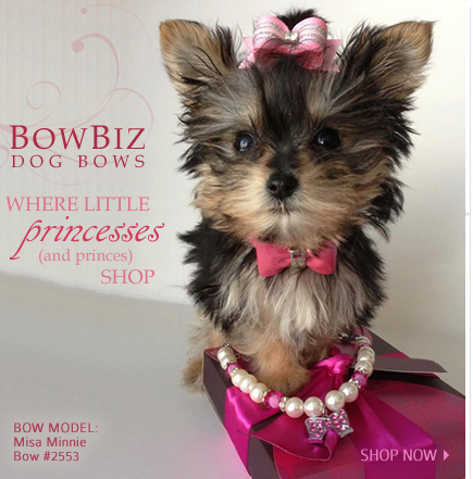 How To Make Your Own Dog Grooming Bows